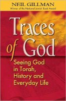 Traces of God, by Rabbi Neil Gillman